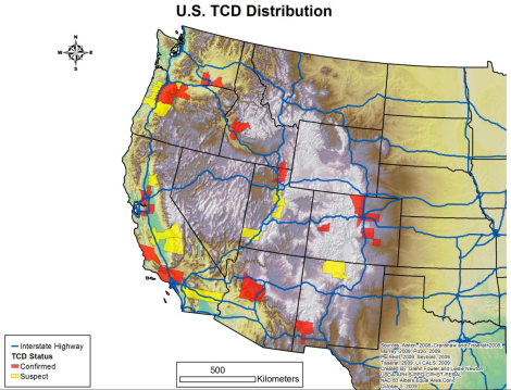 The current distribution of TCD in the United States. Photo courtesy www.thousandcankerdisease.com